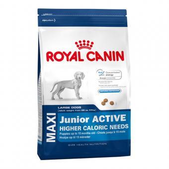 Royal Canin 4кг Maxi junior active Для щенков крупных пород с высокими энергетическими потребностями с 2 до 15/18 месяцев