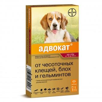 Bayer (Байер) Адвокат для собак от 10 до 25 кг 1 пипетка