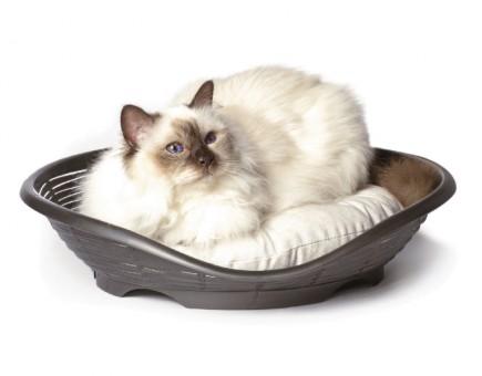 Bama Pet 48*46*11 см лежанка Pasha с подушкой для кошек и маленьких собак, антрацит