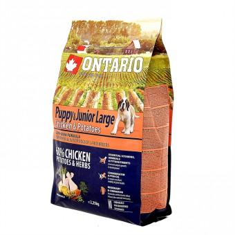 Ontario 2,25кг  Puppy Junior Large Chicken Potatoes Для щенков крупных пород с курицей и картофелем