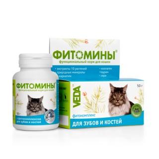 ФИТОМИНЫ 50г - функциональный корм для кошек  с фитокомплексом для зубов и костей