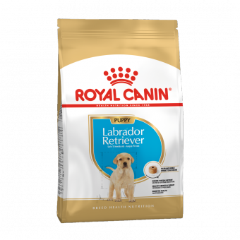Royal Canin 3кг Labrador retriever 33 junior Для щенков породы лабрадор до 15 месяцев