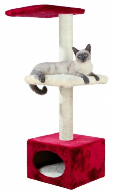 Кошки домик