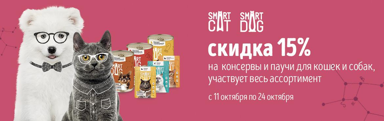 smartdog консервы