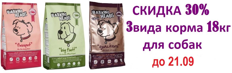 Now баркин -30%