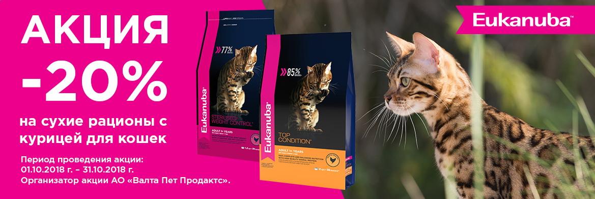 Эукануба кошки