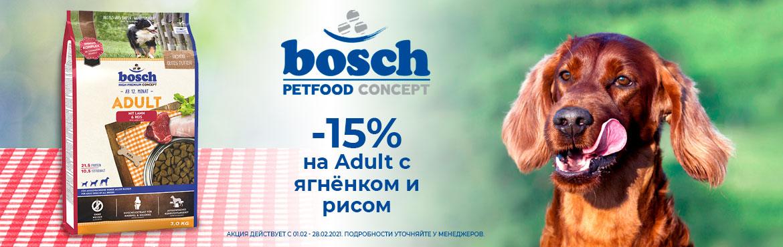 BOSCH15