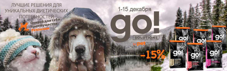 Go Solution
