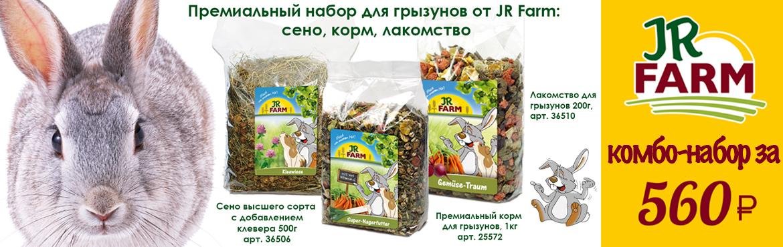 JR-Farm-krolik