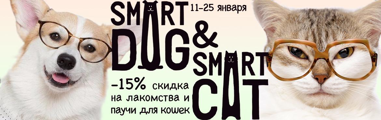 smart лакомства