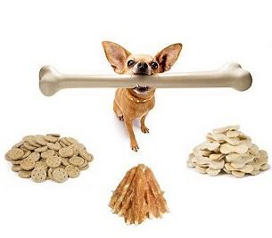 Выбираем косточку собаке