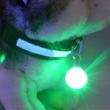 Светящийся брелок для собаки
