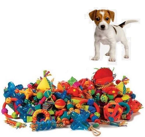 Игрушки PetStages, Kong, Trixie, JW – что выбрать