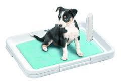 Туалеты для щенков и собак мелких пород