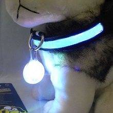 Светящиеся брелки для собаки